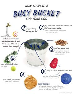 Looking for a way to entertain your dog during the day? Try a Busy Bucket!