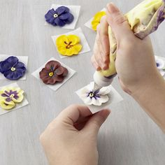 The vibrant pansy features petals in complementary colors and a distinctive loop center.  They can be multi-colored or all one color. Add multi-tones using a striped bag or by painting in colors at the flower's center or at the petal edge with a fine brush dipped in a small amount of lemon extract tinted with icing color.
