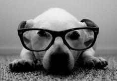 Vos plus belles photos en noir et blanc - L'Internaute Photo numérique