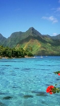 Bora Bora – The Most Romantic Island, Information and Gallery | Take a Quick Break