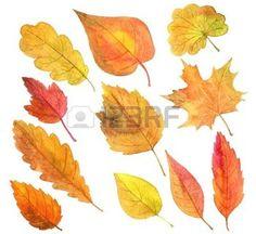 hojas de otoño dibujo: