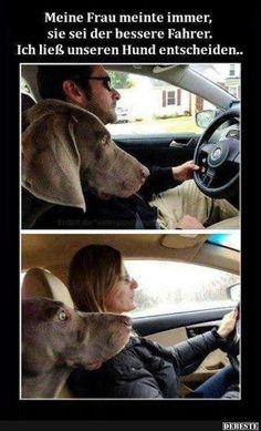 Meine Frau meinte immer, sie sei der bessere Fahrer.. | Lustige Bilder, Sprüche, Witze, echt lustig
