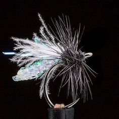 This black midge by @ebbsforce1 has all the sex appeal #FlyFishing