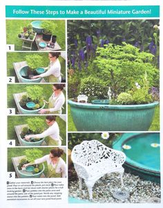 Here is a summary of the Pond in a Pot project, from the Timber Press wintercatalog, 2013