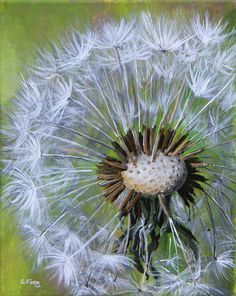Christine Ford Dandelion Painting, Watercolour Painting, Watercolor Flowers, Painting & Drawing, Summer Art Projects, Expressive Art, Learn To Paint, Acrylic Art, Painting Inspiration