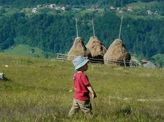 La Roumanie rurale