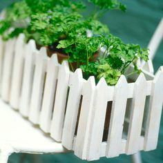 How cute is this? Probably the only way I'll have my own picket fence.