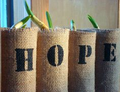 Beautiful words on rustic burlap over tin cans. daffodil bulbs.