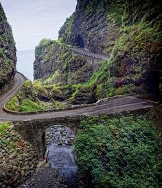 Scenic road, Madeira Portugal ~ been here ~ nainis Funchal, Visit Portugal, Portugal Travel, Spain And Portugal, Beautiful Islands, Beautiful Places, Places To Travel, Places To See, Places Around The World