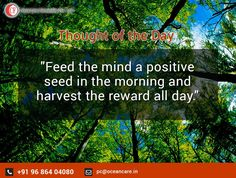 Thought of the day - Ocean care forwarders pvt ltd