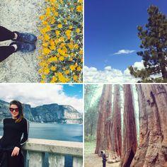 Um ano sem Zara: A primeira (de muitas) visitas a Yosemite