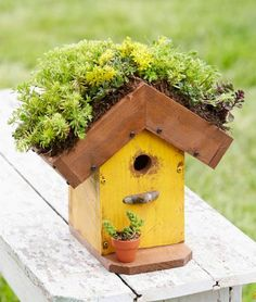 Home tweet home! Do you love our eco-friendly birdhouse? Step-by-step instructions for making this cutie: http://www.midwestliving.com/garden/ideas/how-to-make-a-living-roof-birdhouse/?page=0