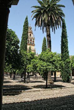 Patio de los Naranjos, Mezquita de Córdoba, Españá
