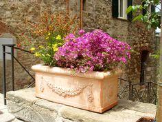 at jacksons home garden dallas tx. beautiful ideas. Home Design Ideas
