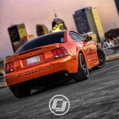 "Samantha's 2004 #Mustang ""Terminator"" SVT Cobra in Competition Orange."