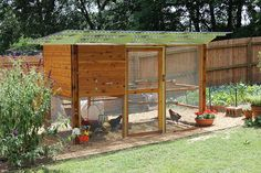 our finished Garden Coop