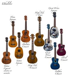 Luna's line up.  I would love the Great Wave Pineapple uke on the top right.