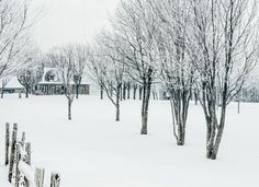 Winter Home by Lee Bodson on Winter House, Snow, Nature, Outdoor, Home, Outdoors, Naturaleza, House, Outdoor Games