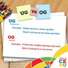 G News, Trivia, Education, Instagram, Quizes, Onderwijs, Learning