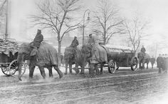 Elephants of the Hagenbeck Zoo pulling containers for an ammunition factory in Berlin - winter 1917/18