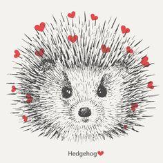 hedgehog by Danya on Hedgehog Drawing, Hedgehog Art, Hedgehog Illustration, Graphic Illustration, Happy Birthday Drawings, Funny Hedgehog, Diy Postcard, Bright Art, Envelope Art