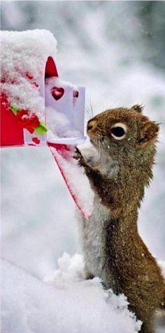 ❤ ... aaaaah, Post von meiner Liebsten! ❤