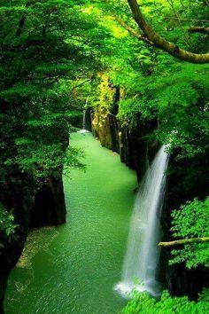 Kings Canyon National Park, California  |nature| |amazingnature|  #nature #amazingnature  https://biopop.com/