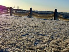 Spray from the Elizabeth River creates an icy alien landscape.