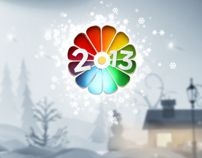 show tv 2013 new year