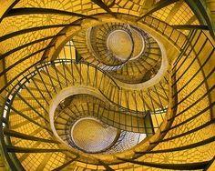 Am I in a Yellow Escher?