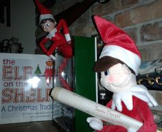 Santa Elf has Toastie's adoption papers in hand