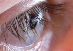 long thick lashes can be yours by giving them a coating of castor oil, rich in vitamin E and a natural hair restorer.