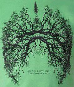 ¿Estas respirando? Dale gracias a un árbol.