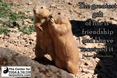 The greatest gift of life is friendship and I have received it…..Hubert H Humphrey