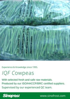 FROZEN ASPARAGUS BEANS IQF ASPARAGUS BEANS FROZEN COWPEAS  IQF COWPEAS  FROZEN ASPARAGUS BEANS SUPPLIER CHINA IQF ASPARAGUS BEANS SUPPLIER CHINA FROZEN COWPEAS SUPPLIER CHINA IQF COWPEAS SUPPLIER CHINA FROZEN VEGETABLES SUPPLIER CHINA FROZEN FRUITS SUPPLIER CHINA  MORE INFO: cwl@sinofrost.com.cn Asparagus Beans, Frozen Seafood, Frozen Vegetables, Frozen Fruit, Food Safety, Raw Materials, Berries, Stuffed Mushrooms, China