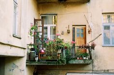 balcony with lots of flowers!                                                                                                                                                                                 More