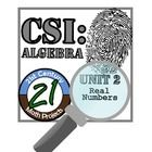 Nothing like a good criminal investigation to liven up number sense! In this project, students will work in teams to investigate the culprit of six...