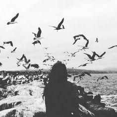«... Ταξιδεύουμε  για να χαθούμε». #RayBradbury  #QuieroUnViaje #MoodOfTheDay