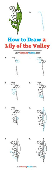 How to Draw a Lily of the Valley - Really Easy Drawing Tutorial