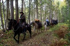 Experience Wells Gray Park Western Trail Rides!