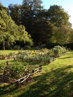fabulous french chateau potager Allotment Gardening, Potager Garden, Garden Landscaping, Landscaping Ideas, Home Grown Vegetables, Love Garden, Dream Garden, French Chateau, Garden Structures