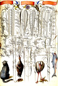 """This is amazing!!! Georg Bocskay, calligraphy; Joris Hoefnagel, miniature painting, """"Folio 94,"""" from Calligraphic Specimen Book, 1591-94 miniature painting; 1571-73 calligraphy. Parchment, watercolours and opaque paint, silver and gold heightening, 18.8 x 14 cm. Kunsthistorisches Museum, Vienna, inv. no. KK 975"""