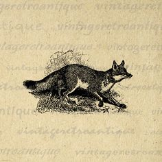 Original Vintage Fox Mini Iron On Transfer