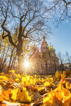 The Church of the Savior on Spilled Blood in St. Petersburg, Russia