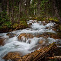 Pretty stream while hiking to Consolation Lakes near Lake Louise. #consolationlakes #hike
