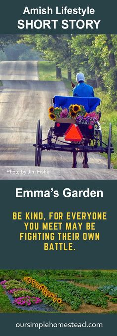 Amish Lifestyle Short Story - Emma's Garden - The soothing clip clop of her horse's hooves did nothing in calming Emma's anxiety over her morning delivery. She'd gotten up early to get all of her chores done and to cut a fresh batch of flowers so she woul