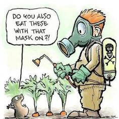 If You Eat GMO Foods, or Use Roundup, Please Stop! Here is Why, and Here Are the Safer Alternatives My Family Has Chosen!