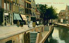 Over de kelders in Leeuwarden