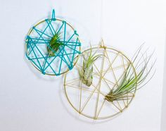 CUSTOM Hanging Gold Air Plant Holder Your by FromBehindThePines