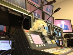 CeSaR hanging out in video world with our Folsom Screen Pro II
